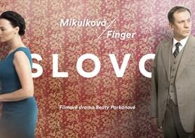 Filmaři hledají komparz v Třebíči