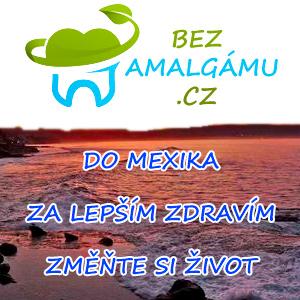 www.bezamalgamu.cz