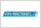 Agentura práce Amboseli