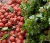 Farmářské trhy na Dolním náměstí v Opavě začínají