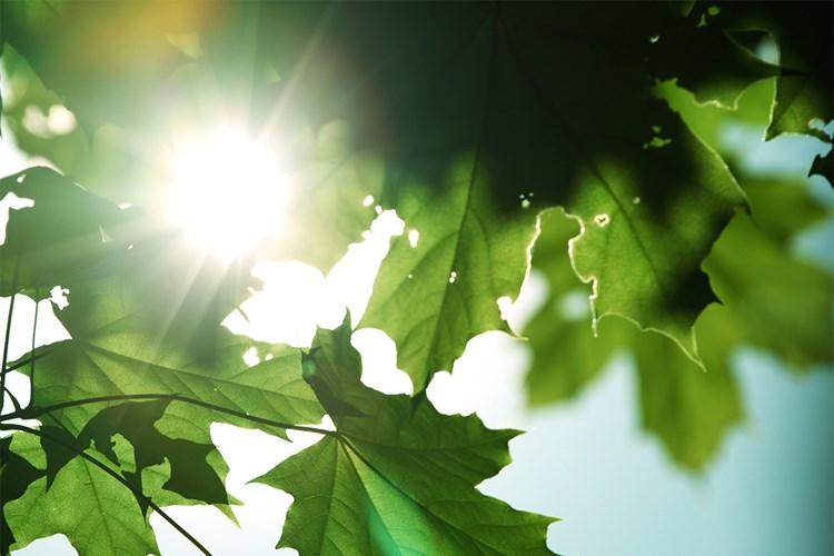 Středočeský ekofestival přinese více než 45 akcí