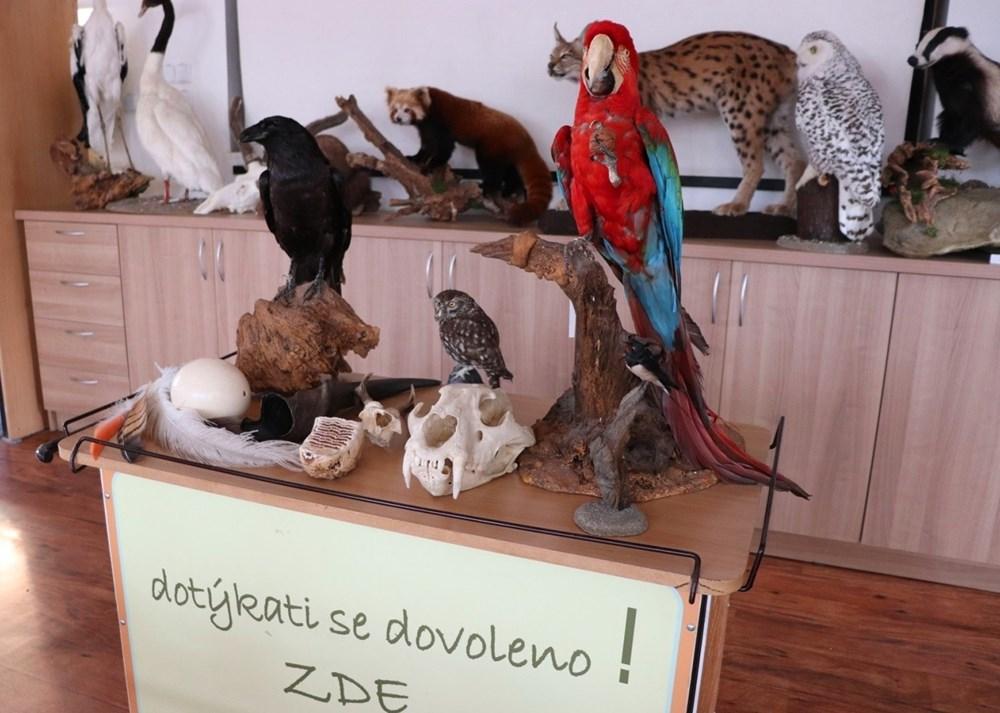 Popis: Výukové centrum Zoo Ostrava.